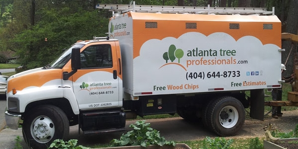 Call ATP for Spring tree trimming and yard clean-up.