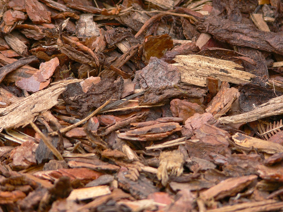Use bark mulch to decorate your yard.