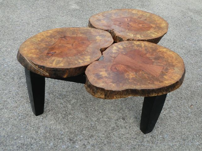 A beautiful tree stump coffee table