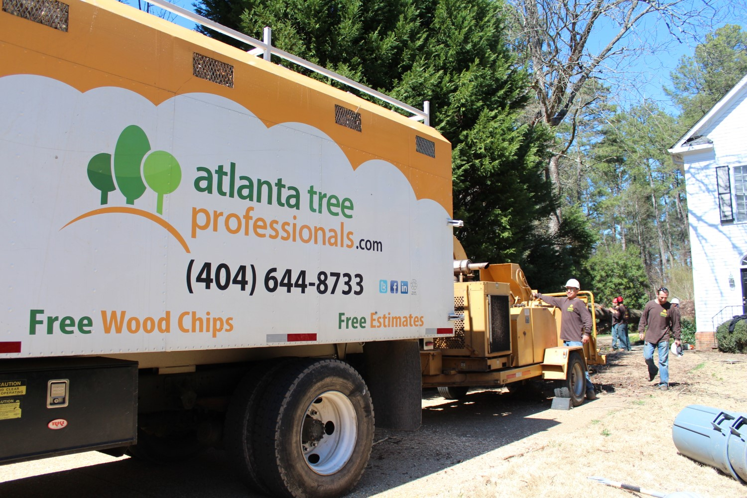 For the best tree removal Woodstock GA calls ATP